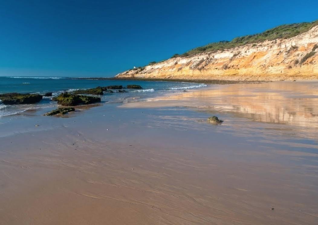 """""""El barrito colorao"""", en la playa de la Yerbabuena, Barbate."""